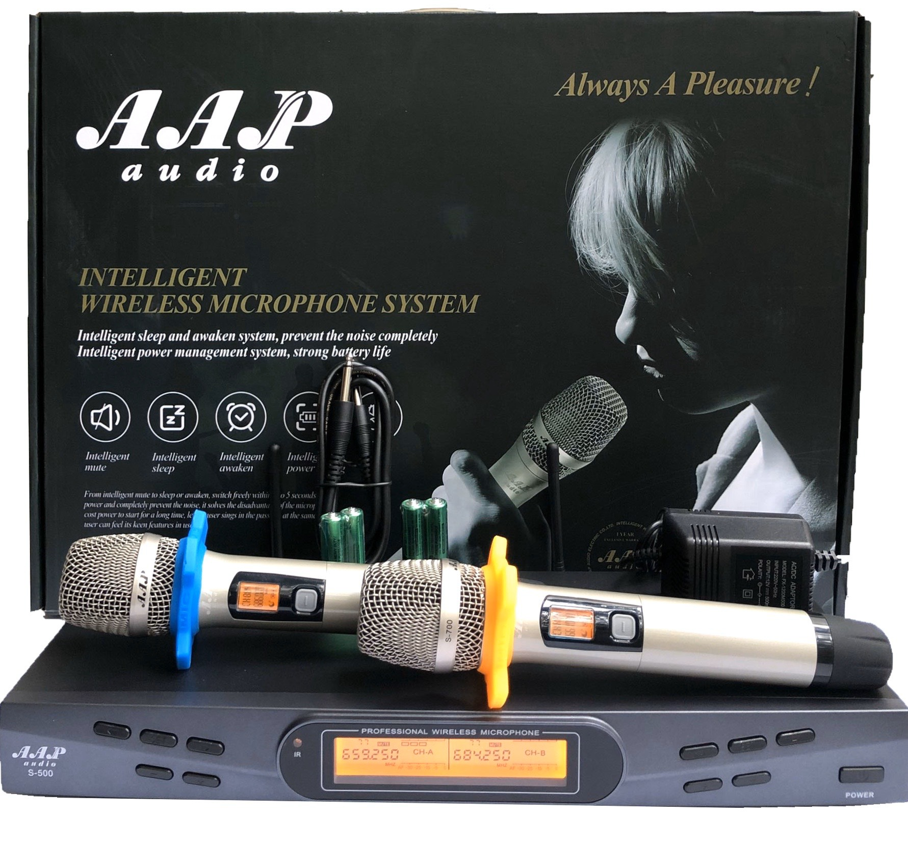 Micro karaoke AAP S 300